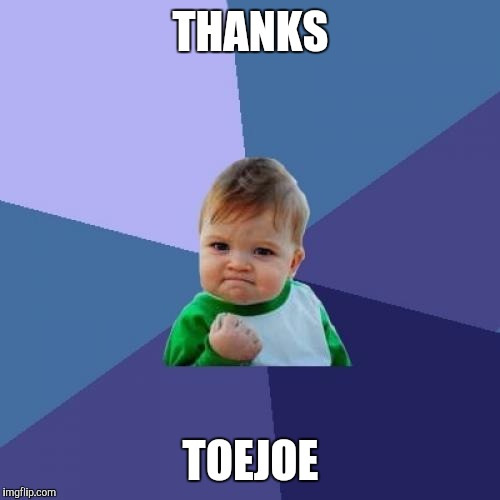 Success Kid Meme | THANKS TOEJOE | image tagged in memes,success kid | made w/ Imgflip meme maker