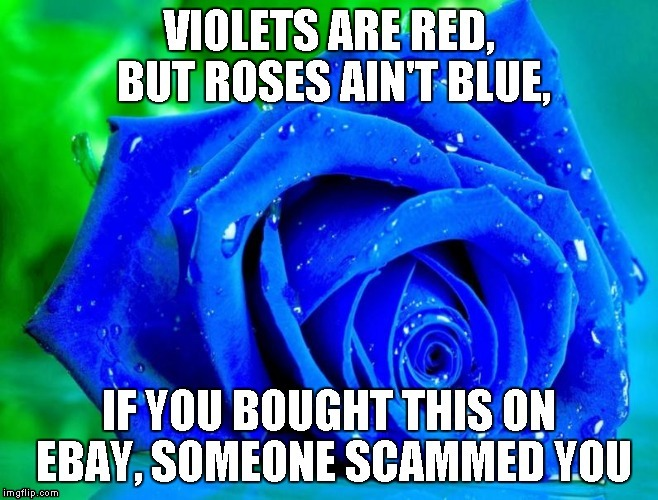 image tagged in poem,roses are red violets are are blue,internet scam | made w/ Imgflip meme maker