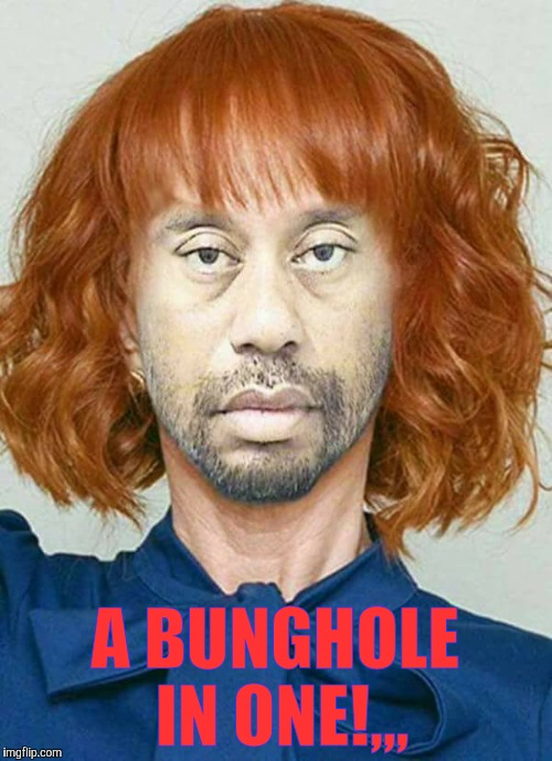 A-holes in one!!! |  A BUNGHOLE IN ONE!,,, | image tagged in tiger woods mug shot,kathy griffin mug shot,orange is the new black,a-holes in one,bunghole mania | made w/ Imgflip meme maker