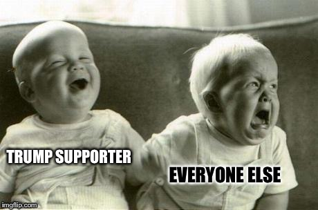 Lol baby vs WTF baby | TRUMP SUPPORTER EVERYONE ELSE | image tagged in lol baby vs wtf baby | made w/ Imgflip meme maker