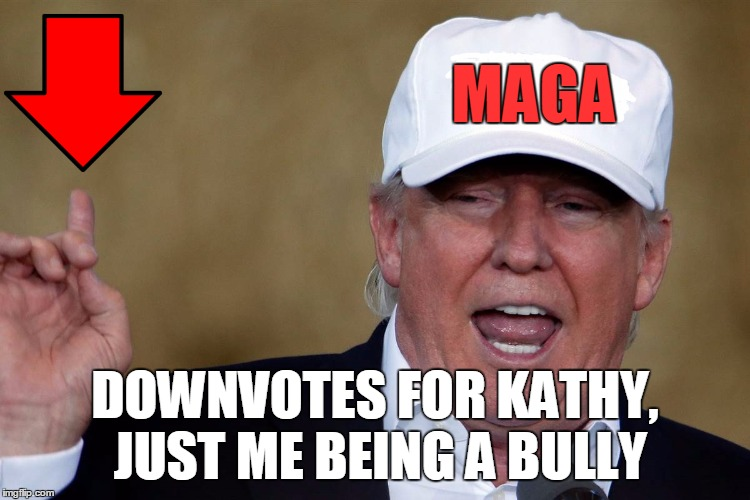 Donald Trump Blank MAGA Hat | MAGA DOWNVOTES FOR KATHY, JUST ME BEING A BULLY | image tagged in donald trump blank maga hat | made w/ Imgflip meme maker