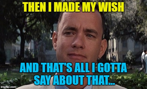 THEN I MADE MY WISH AND THAT'S ALL I GOTTA SAY ABOUT THAT... | made w/ Imgflip meme maker
