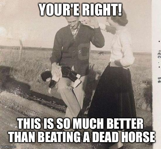 Monkey Spanker | YOUR'E RIGHT! THIS IS SO MUCH BETTER THAN BEATING A DEAD HORSE | image tagged in monkey spanker | made w/ Imgflip meme maker