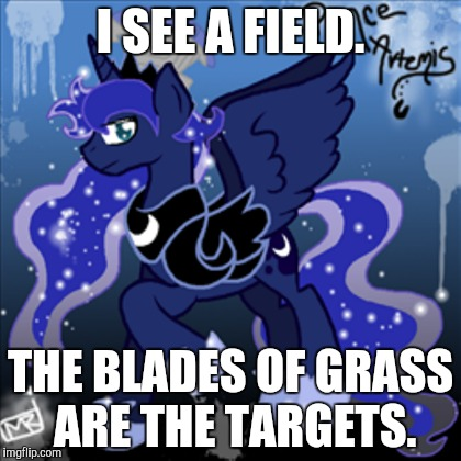 I SEE A FIELD. THE BLADES OF GRASS ARE THE TARGETS. | made w/ Imgflip meme maker