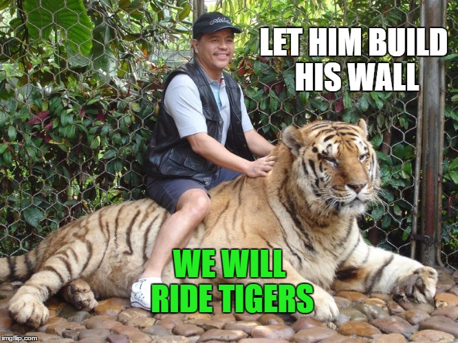 LET HIM BUILD HIS WALL WE WILL RIDE TIGERS | image tagged in ride the tiger | made w/ Imgflip meme maker