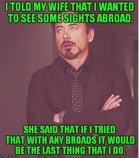 See all of the broads! Thanks to Octavia_Melody for the idea! | I TOLD MY WIFE THAT I WANTED TO SEE SOME SIGHTS ABROAD. SHE SAID THAT IF I TRIED THAT WITH ANY BROADS IT WOULD BE THE LAST THING THAT I DO. | image tagged in memes,face you make robert downey jr,abroad,a broad,wife | made w/ Imgflip meme maker