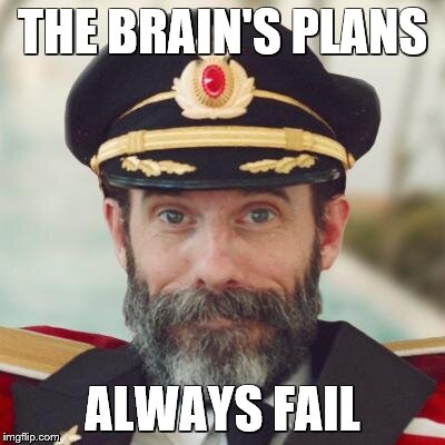 captain obvious | THE BRAIN'S PLANS ALWAYS FAIL | image tagged in captain obvious | made w/ Imgflip meme maker