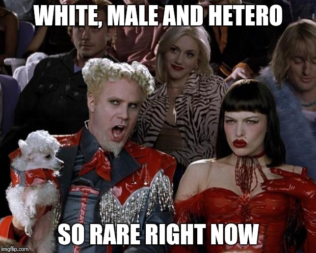 Mugatu So Hot Right Now Meme | WHITE, MALE AND HETERO SO RARE RIGHT NOW | image tagged in memes,mugatu so hot right now | made w/ Imgflip meme maker