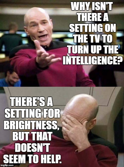 Picard WTF and Facepalm combined | WHY ISN'T THERE A SETTING ON THE TV TO TURN UP THE INTELLIGENCE? BRIGHTNESS, BUT THAT DOESN'T SEEM TO HELP. THERE'S A SETTING FOR | image tagged in picard wtf and facepalm combined | made w/ Imgflip meme maker