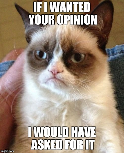 Grumpy Cat Meme | IF I WANTED YOUR OPINION I WOULD HAVE ASKED FOR IT | image tagged in memes,grumpy cat | made w/ Imgflip meme maker