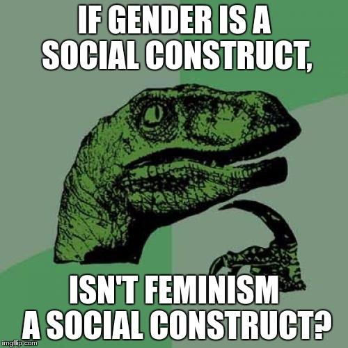 Philosoraptor Meme | IF GENDER IS A SOCIAL CONSTRUCT, ISN'T FEMINISM A SOCIAL CONSTRUCT? | image tagged in memes,philosoraptor | made w/ Imgflip meme maker