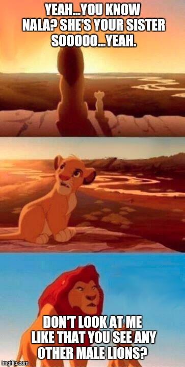 Wtf dad! | YEAH...YOU KNOW NALA? SHE'S YOUR SISTER SOOOOO...YEAH. DON'T LOOK AT ME LIKE THAT YOU SEE ANY OTHER MALE LIONS? | image tagged in lion king,incest,disney,memes,gross,yeah | made w/ Imgflip meme maker
