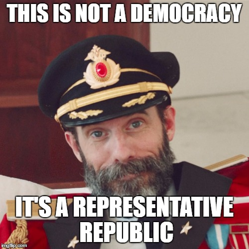 Captain Obvious large | THIS IS NOT A DEMOCRACY IT'S A REPRESENTATIVE REPUBLIC | image tagged in captain obvious large | made w/ Imgflip meme maker