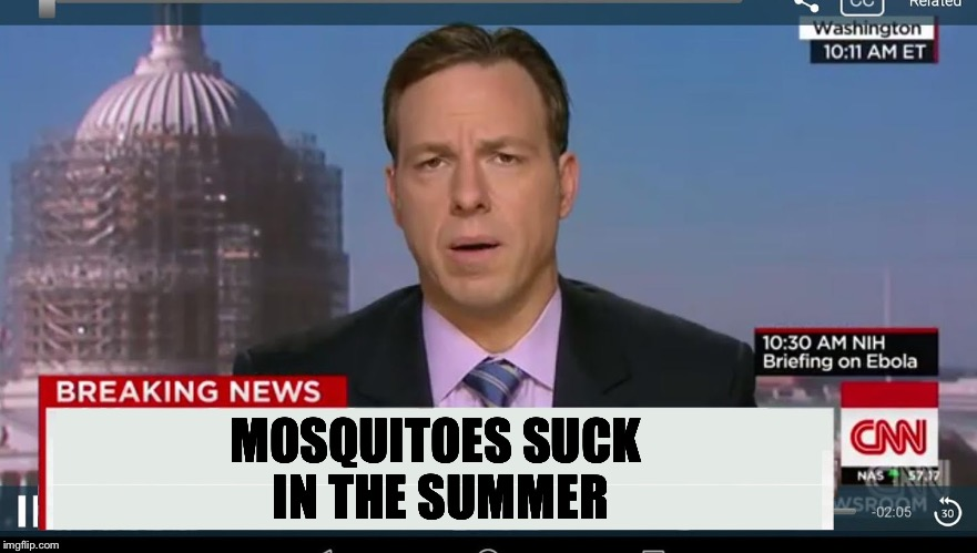 cnn breaking news template | MOSQUITOES SUCK IN THE SUMMER | image tagged in cnn breaking news template | made w/ Imgflip meme maker