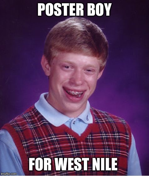 Bad Luck Brian Meme | POSTER BOY FOR WEST NILE | image tagged in memes,bad luck brian | made w/ Imgflip meme maker
