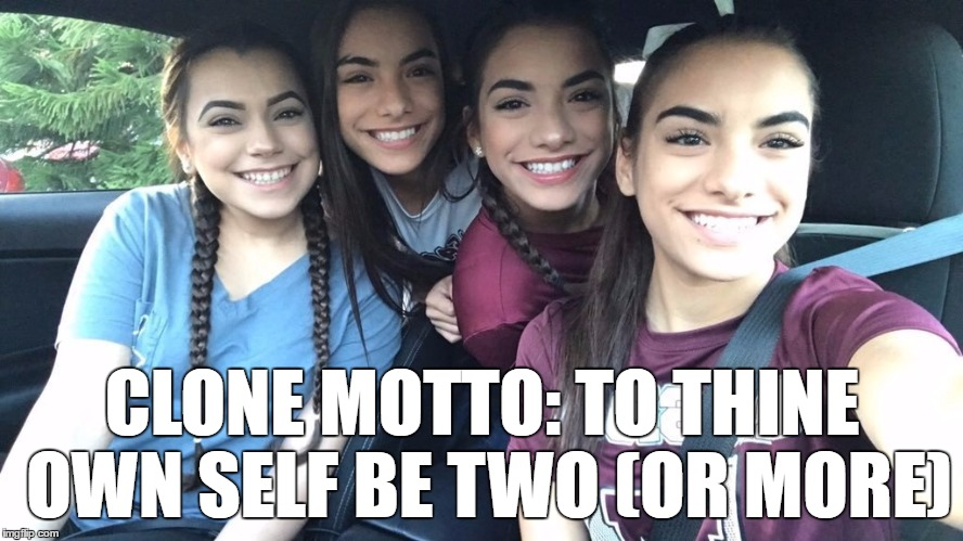 I'll take a dozen! | CLONE MOTTO: TO THINE OWN SELF BE TWO (OR MORE) | image tagged in hot clones,memes | made w/ Imgflip meme maker