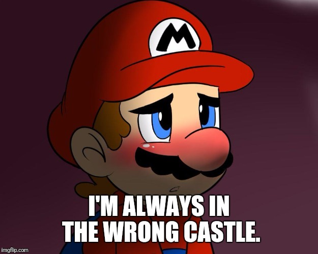 Confession Mario | I'M ALWAYS IN THE WRONG CASTLE. | image tagged in confession mario,memes,first world problems | made w/ Imgflip meme maker