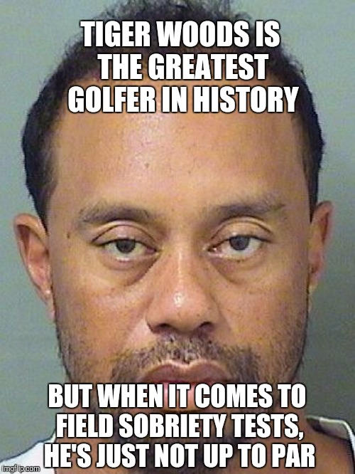 Not up to par... | TIGER WOODS IS THE GREATEST GOLFER IN HISTORY BUT WHEN IT COMES TO FIELD SOBRIETY TESTS, HE'S JUST NOT UP TO PAR | image tagged in tiger woods,tiger woods mug shot,jbmemegeek | made w/ Imgflip meme maker