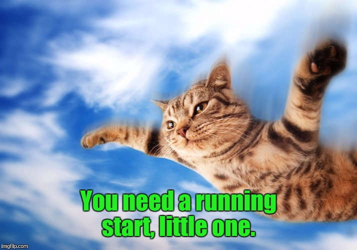 D3.jpg | You need a running start, little one. | image tagged in d3jpg | made w/ Imgflip meme maker