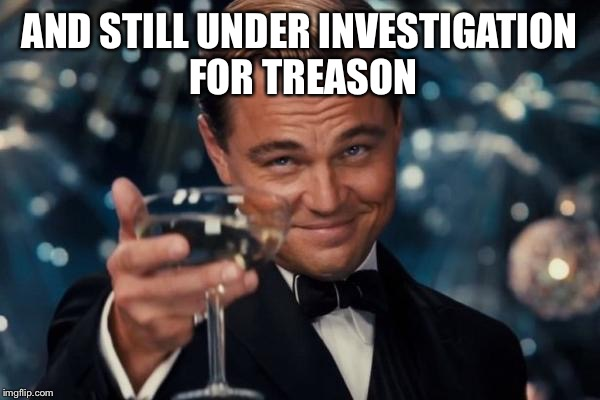 Leonardo Dicaprio Cheers Meme | AND STILL UNDER INVESTIGATION FOR TREASON | image tagged in memes,leonardo dicaprio cheers | made w/ Imgflip meme maker