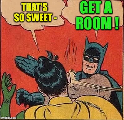 Batman Slapping Robin Meme | THAT'S SO SWEET - GET A ROOM ! | image tagged in memes,batman slapping robin | made w/ Imgflip meme maker