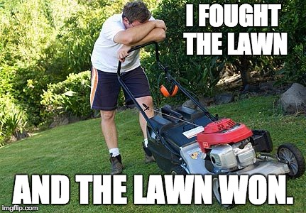 mowing the lawn | I FOUGHT THE LAWN AND THE LAWN WON. | image tagged in mowing the lawn | made w/ Imgflip meme maker