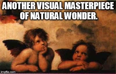 ANOTHER VISUAL MASTERPIECE OF NATURAL WONDER. | made w/ Imgflip meme maker