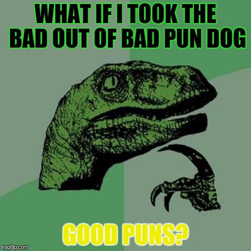 Philosoraptor Meme | WHAT IF I TOOK THE BAD OUT OF BAD PUN DOG GOOD PUNS? | image tagged in memes,philosoraptor | made w/ Imgflip meme maker