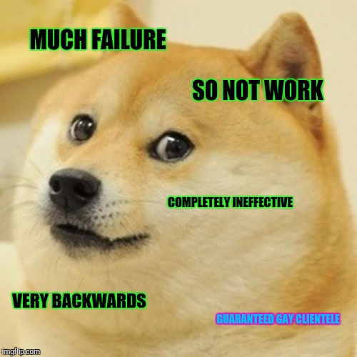Doge Meme | MUCH FAILURE SO NOT WORK COMPLETELY INEFFECTIVE VERY BACKWARDS GUARANTEED GAY CLIENTELE | image tagged in memes,doge | made w/ Imgflip meme maker