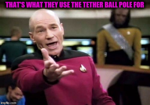 Picard Wtf Meme | THAT'S WHAT THEY USE THE TETHER BALL POLE FOR | image tagged in memes,picard wtf | made w/ Imgflip meme maker