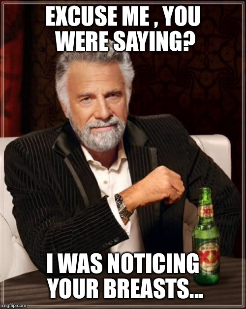 The Most Interesting Man In The World Meme | EXCUSE ME , YOU WERE SAYING? I WAS NOTICING YOUR BREASTS... | image tagged in memes,the most interesting man in the world | made w/ Imgflip meme maker