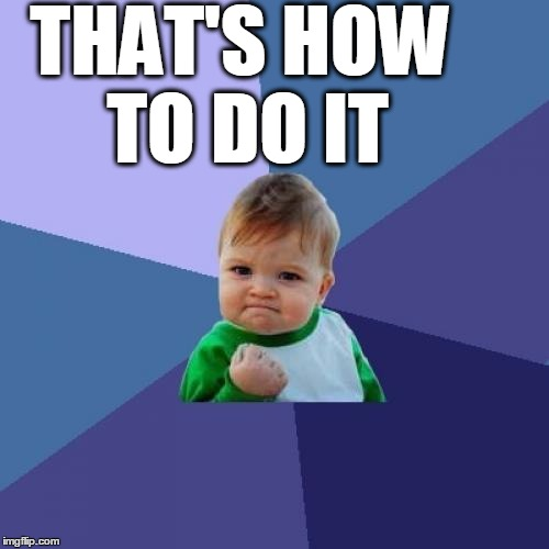 Success Kid Meme | THAT'S HOW TO DO IT | image tagged in memes,success kid | made w/ Imgflip meme maker