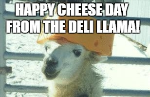 Llama cheese hat | HAPPY CHEESE DAY FROM THE DELI LLAMA! | image tagged in llama cheese hat | made w/ Imgflip meme maker