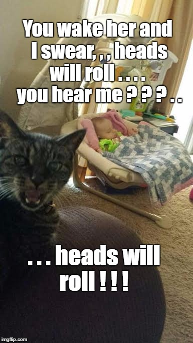 Don't wake the baby | You wake her and I swear, , , heads will roll . . . .   you hear me ? ? ? . . . . . heads will roll ! ! ! | image tagged in cat,sleeping baby | made w/ Imgflip meme maker