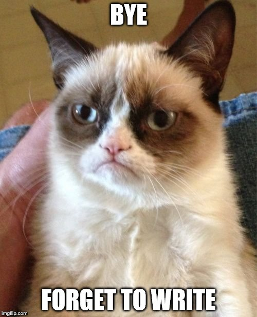 Grumpy Cat Meme | BYE FORGET TO WRITE | image tagged in memes,grumpy cat | made w/ Imgflip meme maker