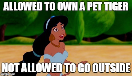 ALLOWED TO OWN A PET TIGER NOT ALLOWED TO GO OUTSIDE | image tagged in princess jasmine | made w/ Imgflip meme maker