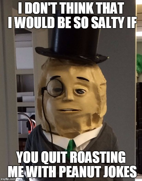 Peanuts | I DON'T THINK THAT I WOULD BE SO SALTY IF YOU QUIT ROASTING ME WITH PEANUT JOKES | image tagged in peanuts | made w/ Imgflip meme maker