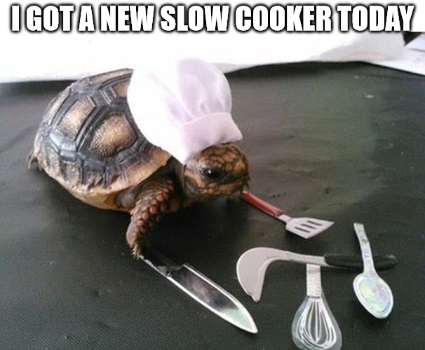 Everyone knows I spend a lot of time in the kitchen | I GOT A NEW SLOW COOKER TODAY | image tagged in memes,cooking,turtle,slow cooker | made w/ Imgflip meme maker