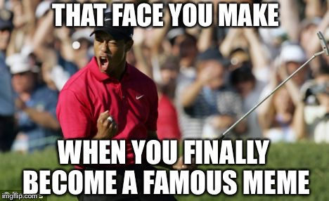 THAT FACE YOU MAKE WHEN YOU FINALLY BECOME A FAMOUS MEME | made w/ Imgflip meme maker