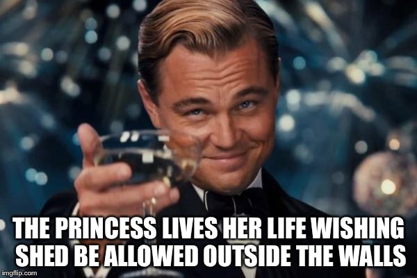 Leonardo Dicaprio Cheers Meme | THE PRINCESS LIVES HER LIFE WISHING SHED BE ALLOWED OUTSIDE THE WALLS | image tagged in memes,leonardo dicaprio cheers | made w/ Imgflip meme maker