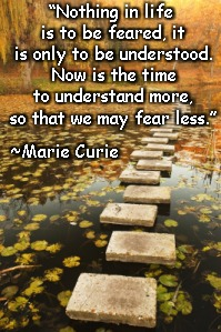 "Stepping Bridge | ""Nothing in life is to be feared, it is only to be understood. Now is the time to understand more, so that we may fear less."" ~Marie Curie 