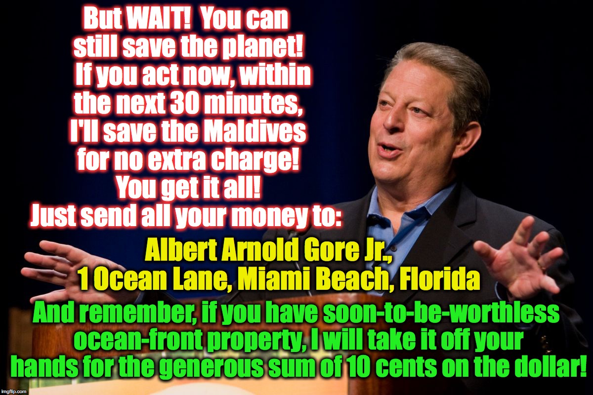 oh those late night tv hucksters! | But WAIT!  You can still save the planet!   If you act now, within the next 30 minutes, I'll save the Maldives for no extra charge!  You get | image tagged in al gore | made w/ Imgflip meme maker