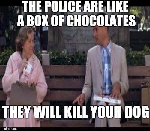 THE POLICE ARE LIKE A BOX OF CHOCOLATES THEY WILL KILL YOUR DOG | made w/ Imgflip meme maker