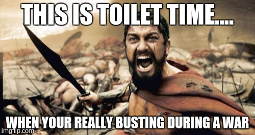 Sparta Leonidas |  THIS IS TOILET TIME.... WHEN YOUR REALLY BUSTING DURING A WAR | image tagged in memes,sparta leonidas | made w/ Imgflip meme maker