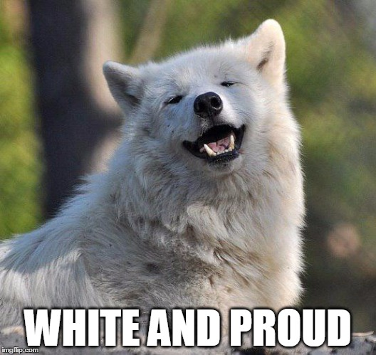 WHITE AND PROUD | image tagged in supersecretwolf | made w/ Imgflip meme maker