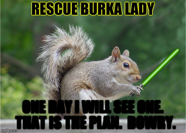 RESCUE BURKA LADY ONE DAY I WILL SEE ONE.  THAT IS THE PLAN.  DOWRY. | made w/ Imgflip meme maker