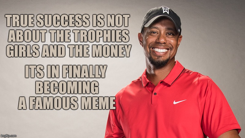 TRUE SUCCESS IS NOT ABOUT THE TROPHIES GIRLS AND THE MONEY ITS IN FINALLY BECOMING A FAMOUS MEME | image tagged in tiger woods,tiger woods mug shot,memes,funny | made w/ Imgflip meme maker
