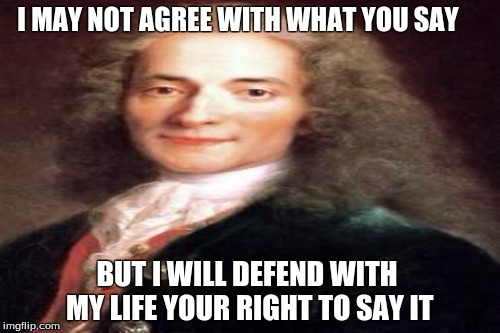 I MAY NOT AGREE WITH WHAT YOU SAY BUT I WILL DEFEND WITH MY LIFE YOUR RIGHT TO SAY IT | image tagged in memes | made w/ Imgflip meme maker