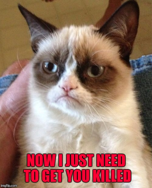 Grumpy Cat Meme | NOW I JUST NEED TO GET YOU KILLED | image tagged in memes,grumpy cat | made w/ Imgflip meme maker