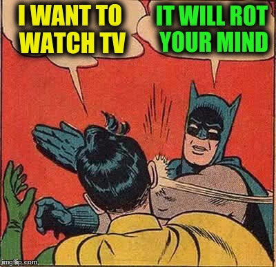 Batman Slapping Robin Meme | I WANT TO WATCH TV IT WILL ROT YOUR MIND | image tagged in memes,batman slapping robin | made w/ Imgflip meme maker